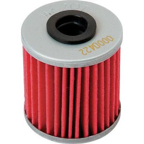 _Filtro de Aceite Hiflofiltro CRF 250 04-18 CRF 450 02-18 Husqvarna TE 250 10-11/TE 310 11 | HF116 | Greenland MX_